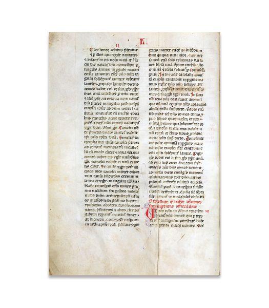 Dužnosti kneza za festu - Statut iz 1272. godine